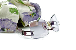 Spectacles and Scarf Royalty Free Stock Photography