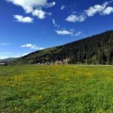 Spectaculair Landschap Royalty-vrije Stock Afbeelding