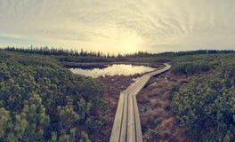 Spectaculaire die zonsondergangmening van een meer door moerasland wordt omringd royalty-vrije stock afbeelding