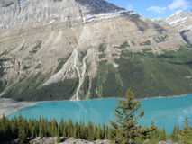 Spectaculaire mening in Canada Royalty-vrije Stock Fotografie