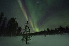 Spectacular aurora borealis (northern lights). Stock Image