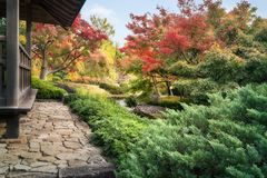 Spectacular autumn foliage at the Chinese style garden in Koko-en Japanese Gardens in Himeji. Spectacular autumn foliage and green vegetation along a small stock photography