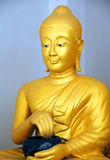 Spectacular Buddha Royalty Free Stock Image
