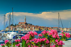 Spectacular cityscape with Rovinj old town,Istria region,Croatia,Europe Royalty Free Stock Image