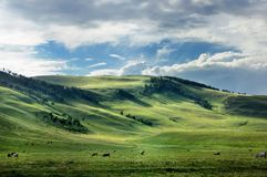 Spectacular clouds over smooth grass hills and steppe in Khakassia, East Siberia, Russia. stock image