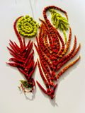Spectacular composition of drooping amaranth inflorescences of the caudate `cascade` royalty free stock photos
