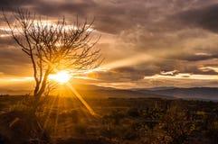 Spectacular Desert Sunrise Stock Image