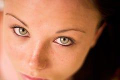 Spectacular eyes Stock Image
