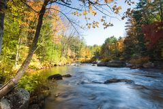 Spectacular fall riverbank Royalty Free Stock Photography