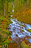 Spectacular Falls Stock Photography