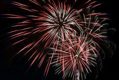 Spectacular Fireworks against black sky Royalty Free Stock Photography