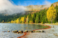 Spectacular foggy autumn landscape with Saint Ana Lake,Transylvania,Romania Royalty Free Stock Photo