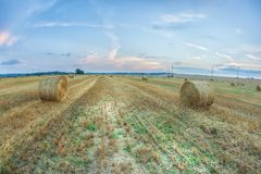 Spectacular golden field with round hay rolls under a blue sky. Spectacular golden field with round hay rolls under a dramatic cloudy sky royalty free stock photography