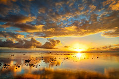 Spectacular golden sunset Stock Photos