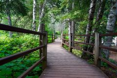 Spectacular Hiking Trails at Gooseberry Falls State Park. In Northern Minnesota in the summertime Stock Photo