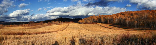The spectacular Inner Mongolia grassland scenery Stock Photo