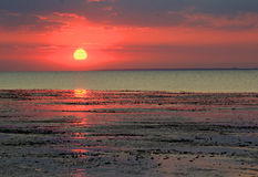 Spectacular kent sunset. Photo of a spectacular sunset on the coast of whitstable in kent england with beautiful reflections at low tide stock photo