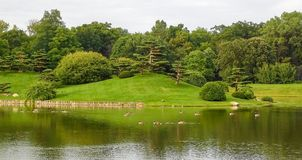 Spectacular Landscape In Japanese Garden royalty free stock image