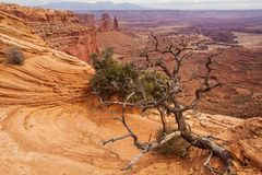 Spectacular landscapes of Canyonlands National park in Utah, USA.  Stock Photography
