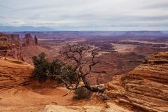 Spectacular landscapes of Canyonlands National park in Utah, USA.  Royalty Free Stock Photography