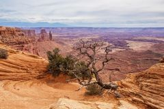 Spectacular landscapes of Canyonlands National park in Utah, USA.  royalty free stock photo