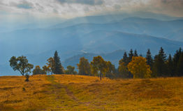 Spectacular light on meadow and forest in autumn. With mountain ranges in background pictured in Romania Stock Images