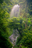 Spectacular morning view, beautiful Nungnung Waterfall, Bali Stock Photo