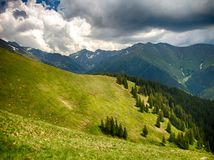 Spectacular mountain landscape with clouds hovering above mountain slopes filled with bushes of rhododendron kotschyi in fagaras m stock photo