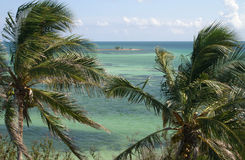 Spectacular ocean view with Palm Trees. From atop the overseas railroad bridge in Bahia Honda royalty free stock photography