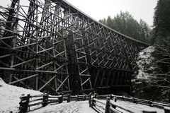The spectacular  old Kinsol Trestle in snowy day, Vancouver Island Royalty Free Stock Photography