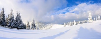 Spectacular panorama is opened on mountains, trees covered with white snow, lawn and blue sky with clouds. The game of light and shadow beautifully plays with stock image