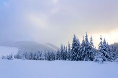 Spectacular panorama is opened on mountains,  trees covered with white snow,  lawn and blue sky with clouds. Winter landscape for leaflets Royalty Free Stock Photography