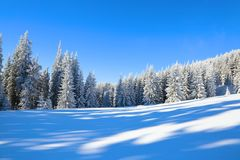 Spectacular panorama is opened on mountains,  trees covered with white snow,  lawn and blue sky. Royalty Free Stock Photography