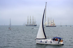 Spectacular Parade of sails Stock Photography