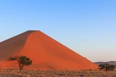 Spectacular red sanddune sunset Sossusvlei Stock Images