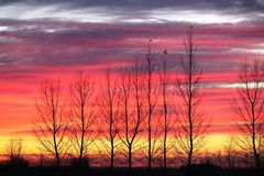 Spectacular Saskatchewan rainbow Sunset. Spectacular colorful rainbow Saskatchewan Sunset Royalty Free Stock Images