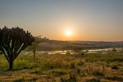 Spectacular savannah landscape of sun raising above marshes. stock photo
