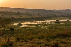 Spectacular savannah landscape of sun raising above marshes. stock photos