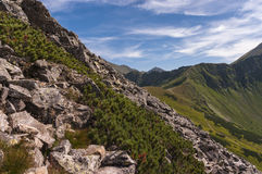 Spectacular scenery of the Western Tatras in the summer Stock Photography