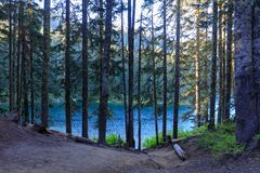 Spectacular scenic of Council Lake in Washington royalty free stock photos