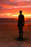 Spectacular sculptures by Antony Gormley Royalty Free Stock Image