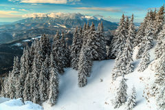 Spectacular snowy winter landscape,Poiana Brasov,Carpathians,Transylvania,Romania,Europe Royalty Free Stock Photo