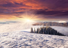 Spectacular sunrise among a sea of ​​fog in the winter Royalty Free Stock Photos