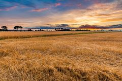 Spectacular sunset over stubble field Royalty Free Stock Photography