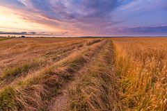 Spectacular sunset over stubble field. Polish countryside after harvest Stock Photo