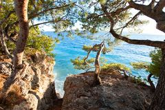 Spectacular view of Adriatic Sea from stone cliff in Dalmatia stock images