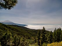 Spectacular view over the clouds to the mountain royalty free stock image