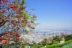 Spectacular view in Haifa on the Bahá`í Gardens stock photo