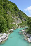 Spectacular view on Soca river. Stock Images