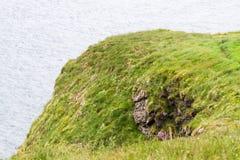 Landscape of Southern Irish Coastline Royalty Free Stock Images